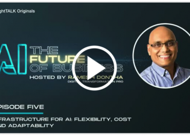 Infrastructure for AI: Flexibility, Cost and Adaptability